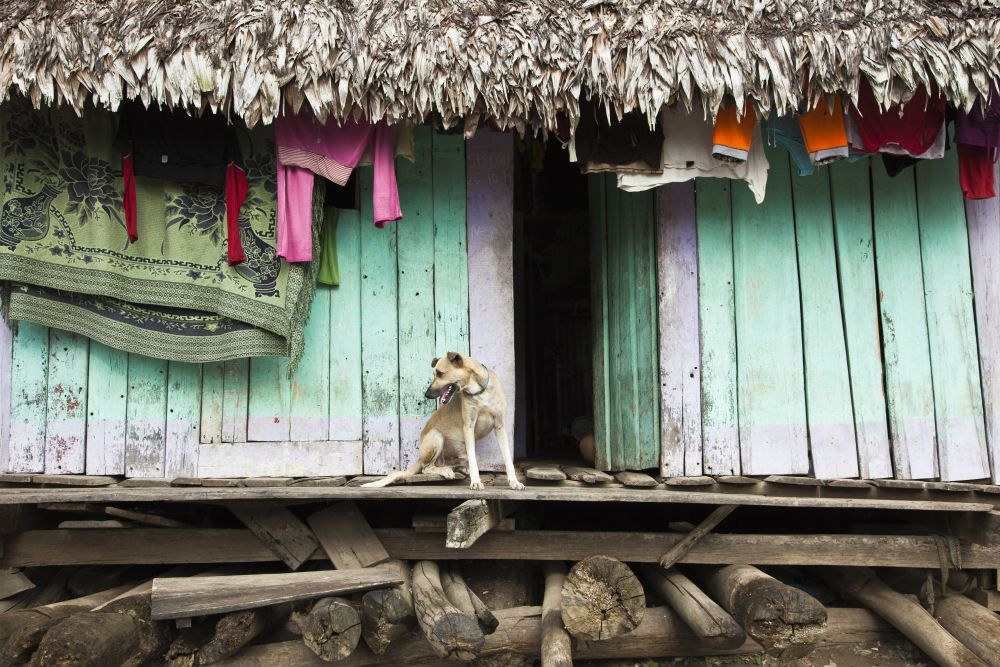 Extreme settlements rough guides iquitos peru south