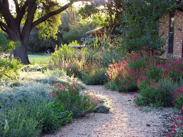 From the Plano Prairie Garden blog. Mike has made an authentic Texas ...
