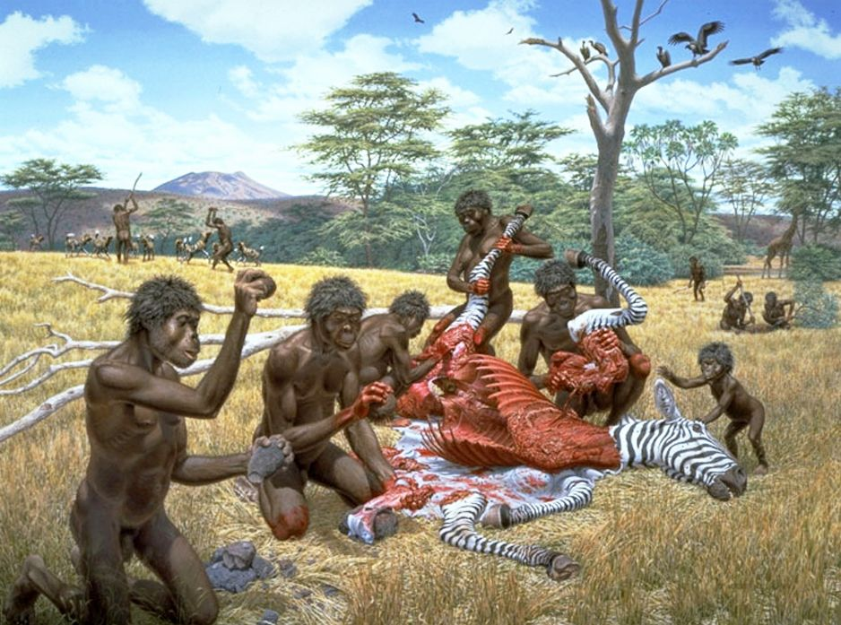 the evolution of homonin tribe from the As mentioned, hominidae was originally the name given to the family of humans and their (extinct) close relatives, with the other great apes (that is, the orangutans, gorillas, and chimpanzees) all being placed in a separate family, the pongidae.