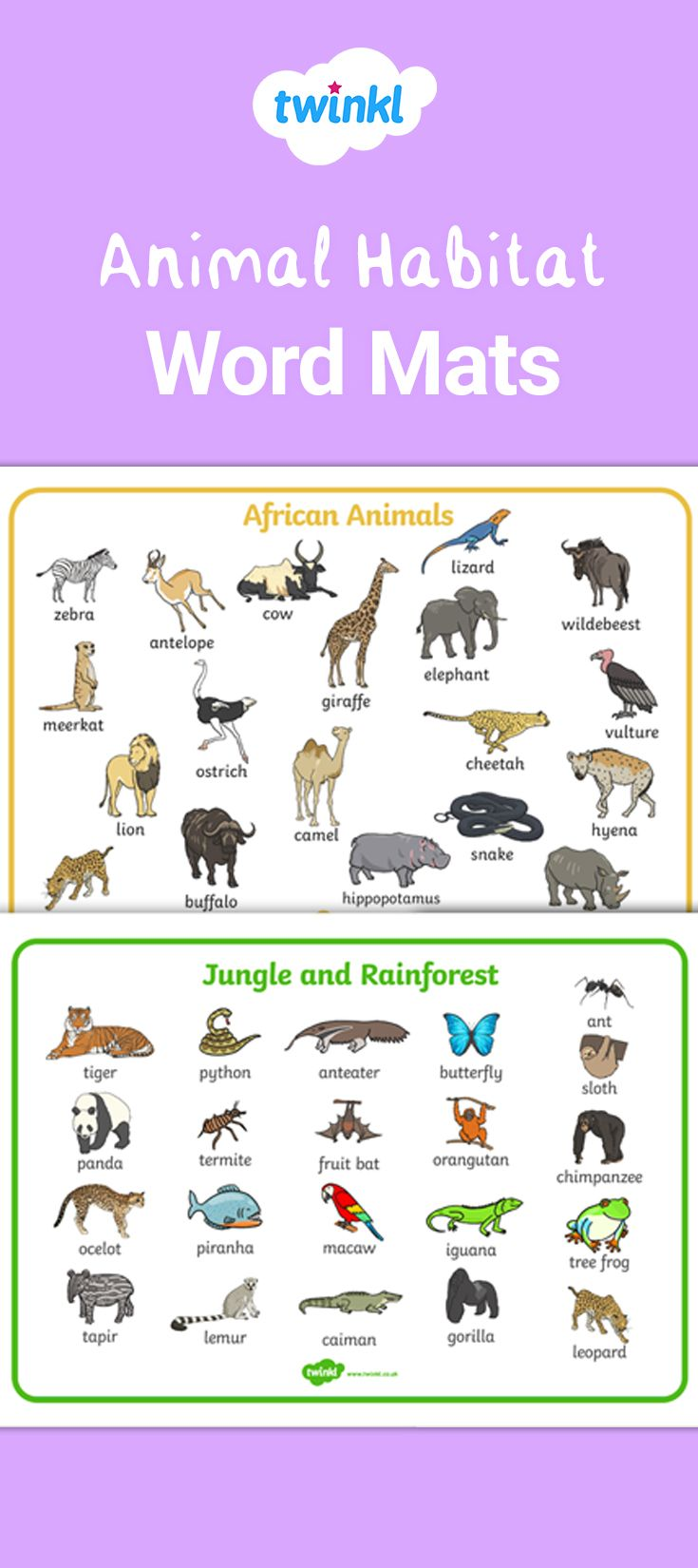 Pin on English vocabulary pictures