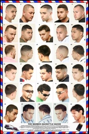 Barber Hairstyle Guide Hair Barber Barber Poster Hair Guide
