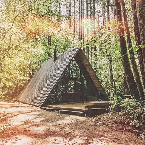 Who wants to hang here and drink a few beers? #electricwest #cabinporn #beerhere