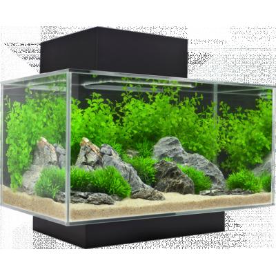 15385 Fluval Edge Aquarium 23l Black 1w400 H400 Png 400 400 Fish Tank Plants Aquarium Set Cool Fish Tanks