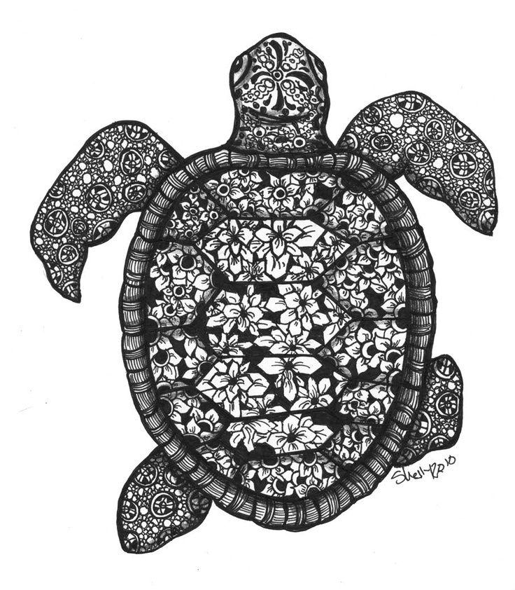 Sea Turtle Zentangle Google Search Color Me