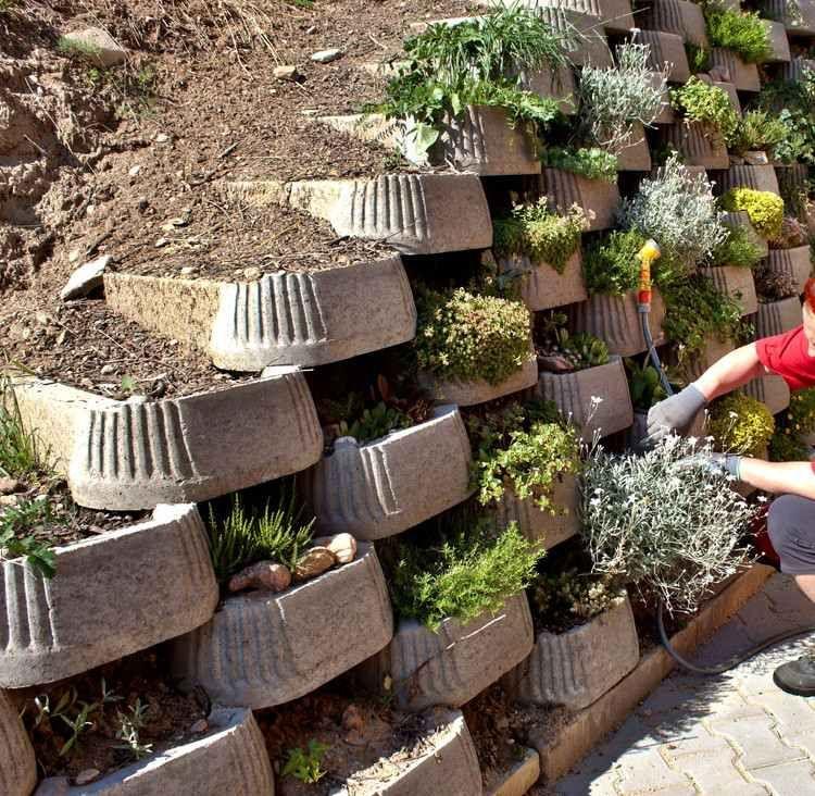Garden Ideas To Hide A Wall begrünbare stützmauer aus zementblocks | garden | pinterest