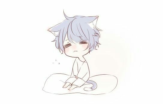 A Sleepy Sora Neko Chibi Boy Wolf Boy Anime Anime Child