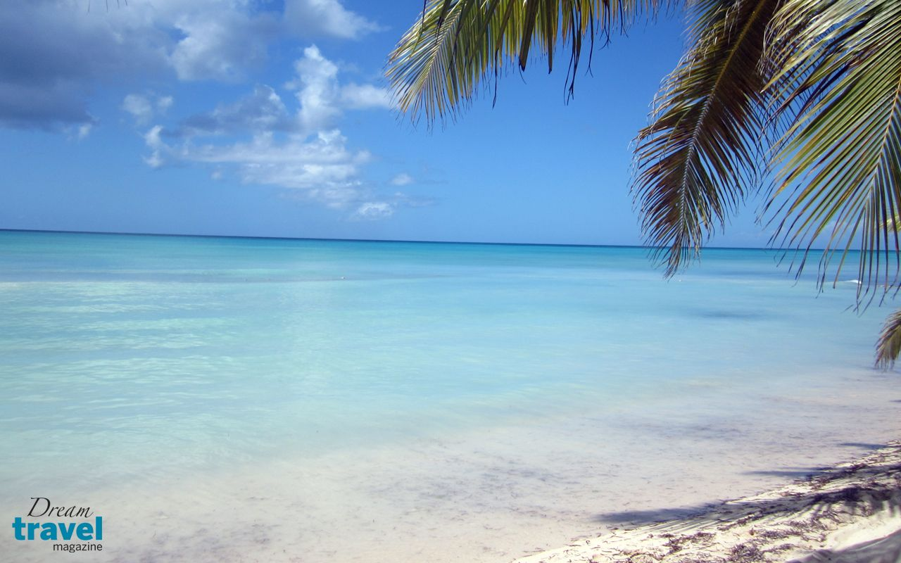 Free desktop wallpaper saona island punta cana - Dominican republic wallpaper ...