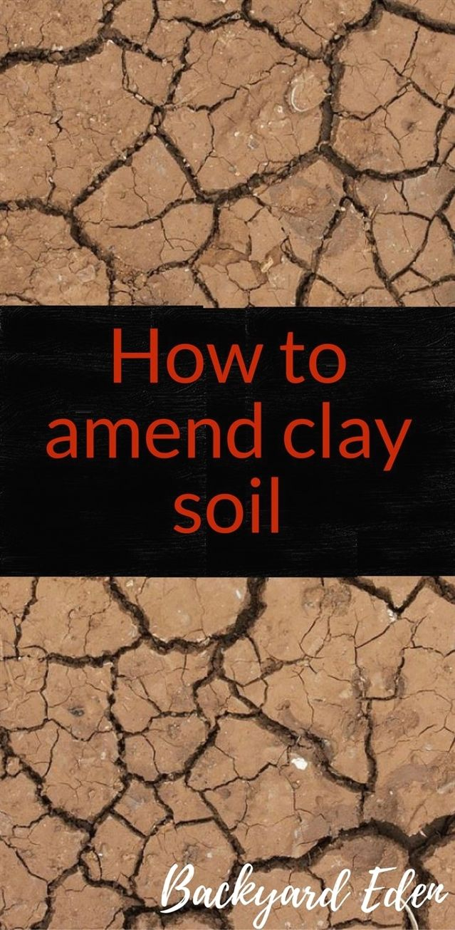 How to amend clay soil | Clay soil, Organic fertilizer and Organic ...