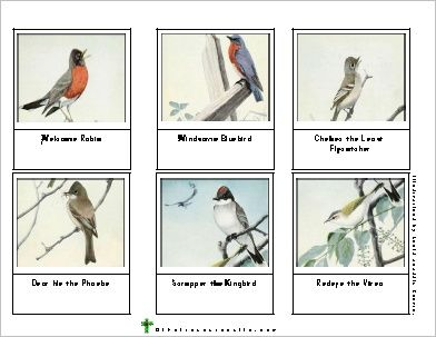Burgess Bird Book Color Cards 9 Sets From That Resource Site