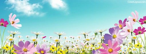 Spring Day Flowers Facebook Cover Fb Cover Page Pinterest