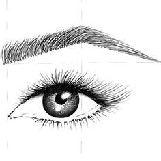 eyebrows drawing - Google Search | Vivid eyes hand-drawn ...