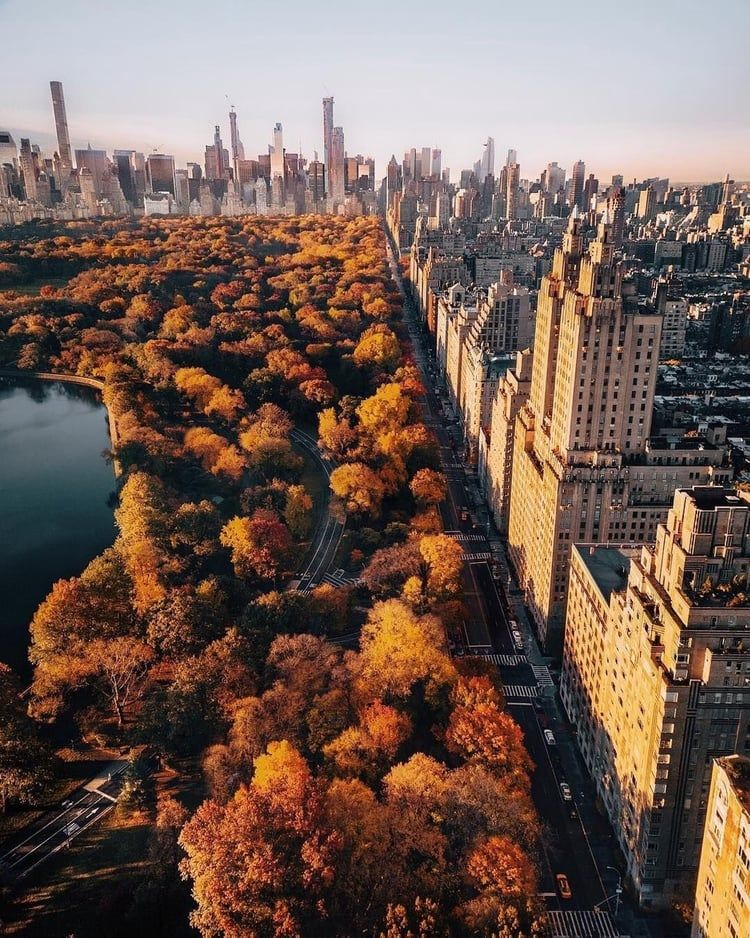 Central Park, new york, and nyc image Beautiful