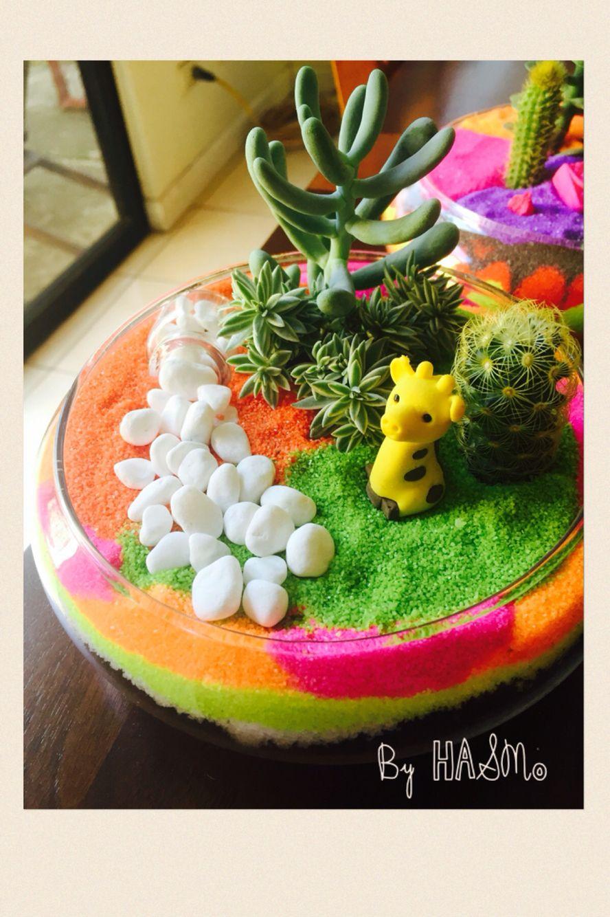 Arena de colores combinada cactus suculentas y un toque - Arena de colores ...