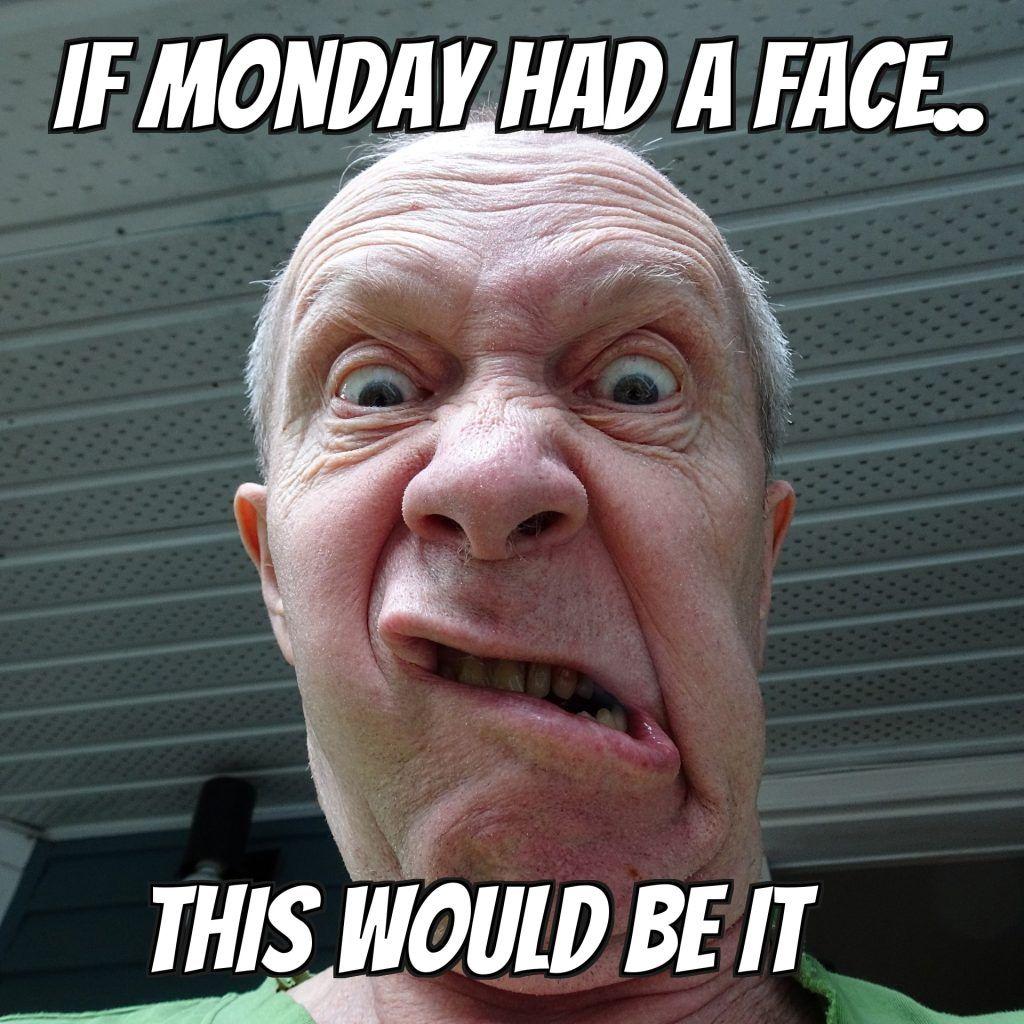 28 Best Work Memes   Work memes, Monday memes, Funny ...