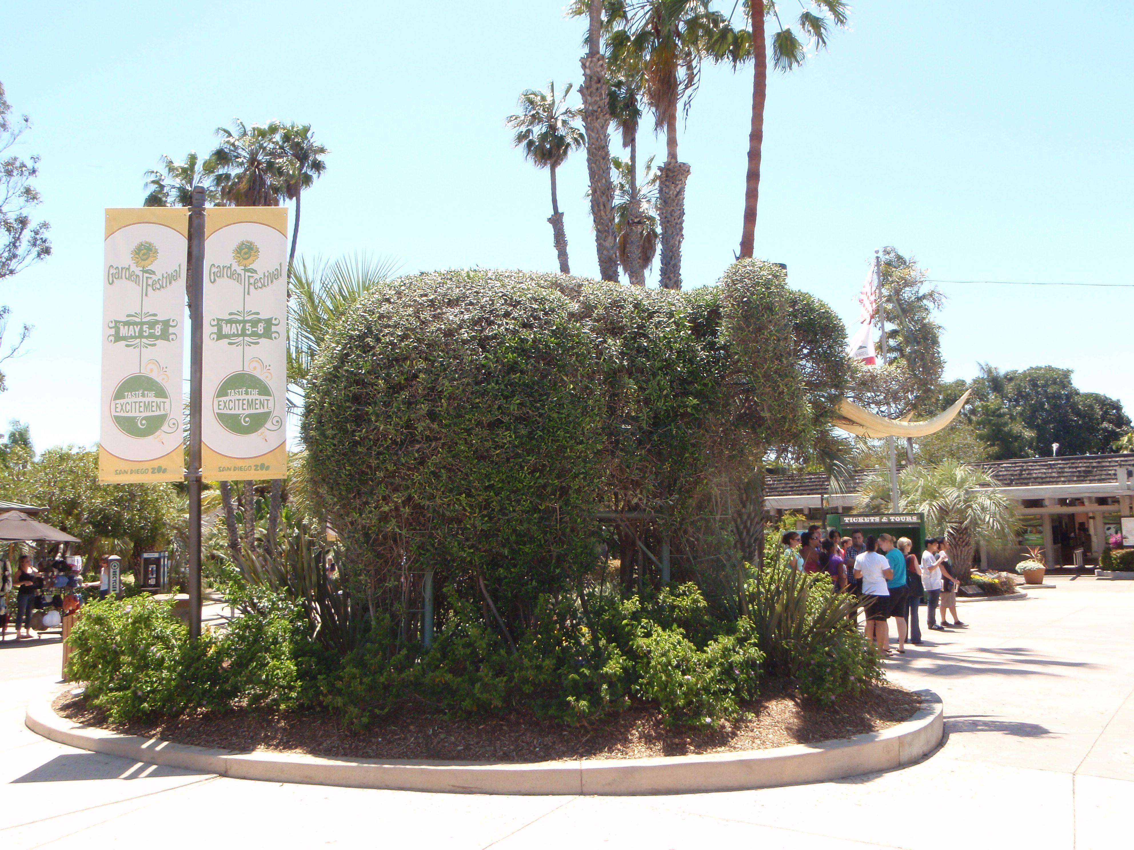 San Diego Zoo!  Fun trip with Kory and Kristine many years ago.