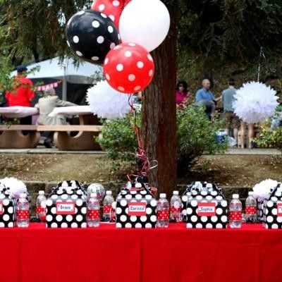 Polka dot posh picnic party - would use different colors but like the concept.