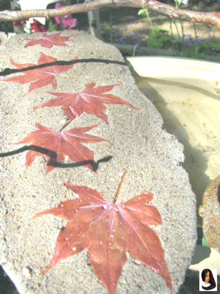 Another shot of the Japanese Maple Leaf Casting #japanesemaple