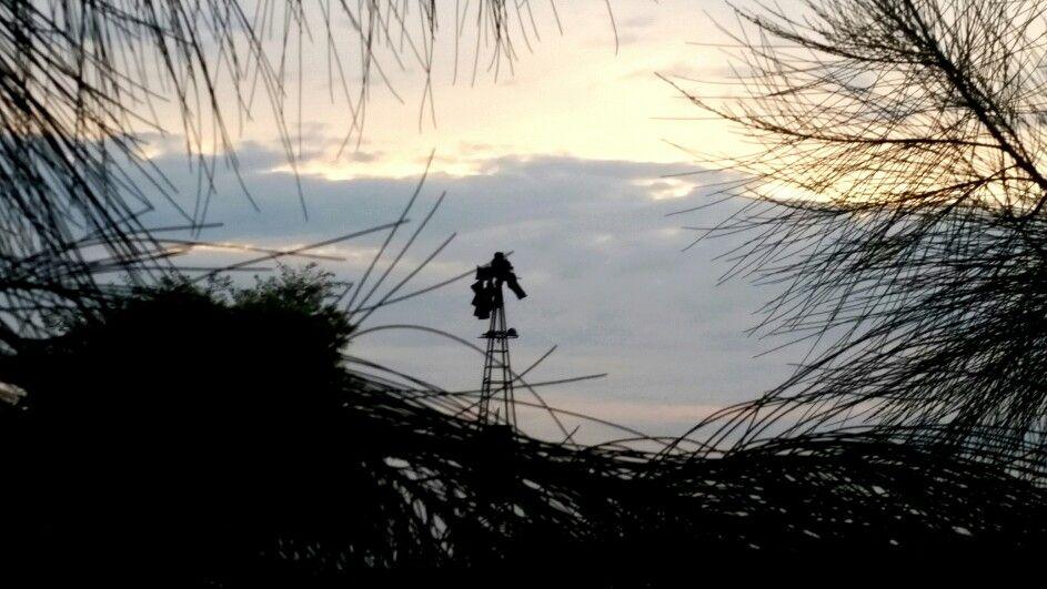 Old Windmill West Montevideo Uruguay Old Windmills Bald Eagle Landscape