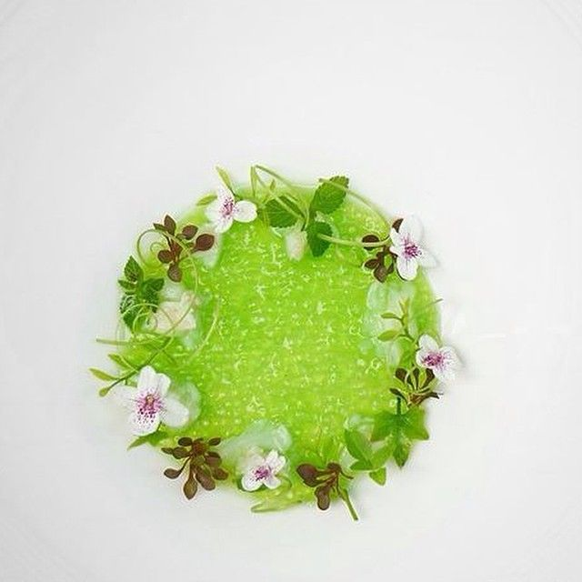 Pandan Saku Crab broth - by chef Wuttisak on IG #gastronomy #plating