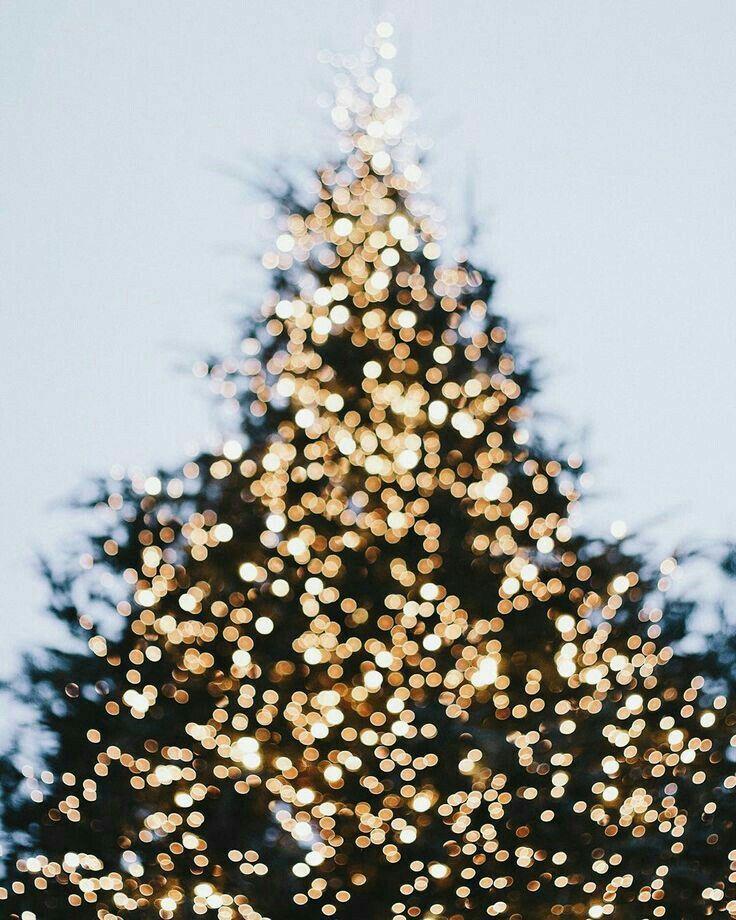 Pinterest Raspberrykitty9 Christmas Aesthetic Christmas