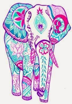 beautiful elephantMore