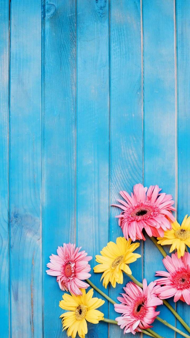 Flowers Wallpaper By Georgekev 3a Free On Zedge In 2020 Flower Background Wallpaper Rainbow Wallpaper Iphone Best Flower Wallpaper