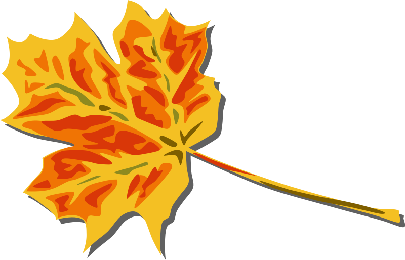 image for fall leaves nature clip art nature clip art free rh pinterest com free clipart autumn leaves free clip art autumn leaves line divider