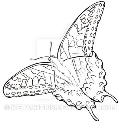 Printable Coloring Page Of A Tiger Swallowtail Butterfly