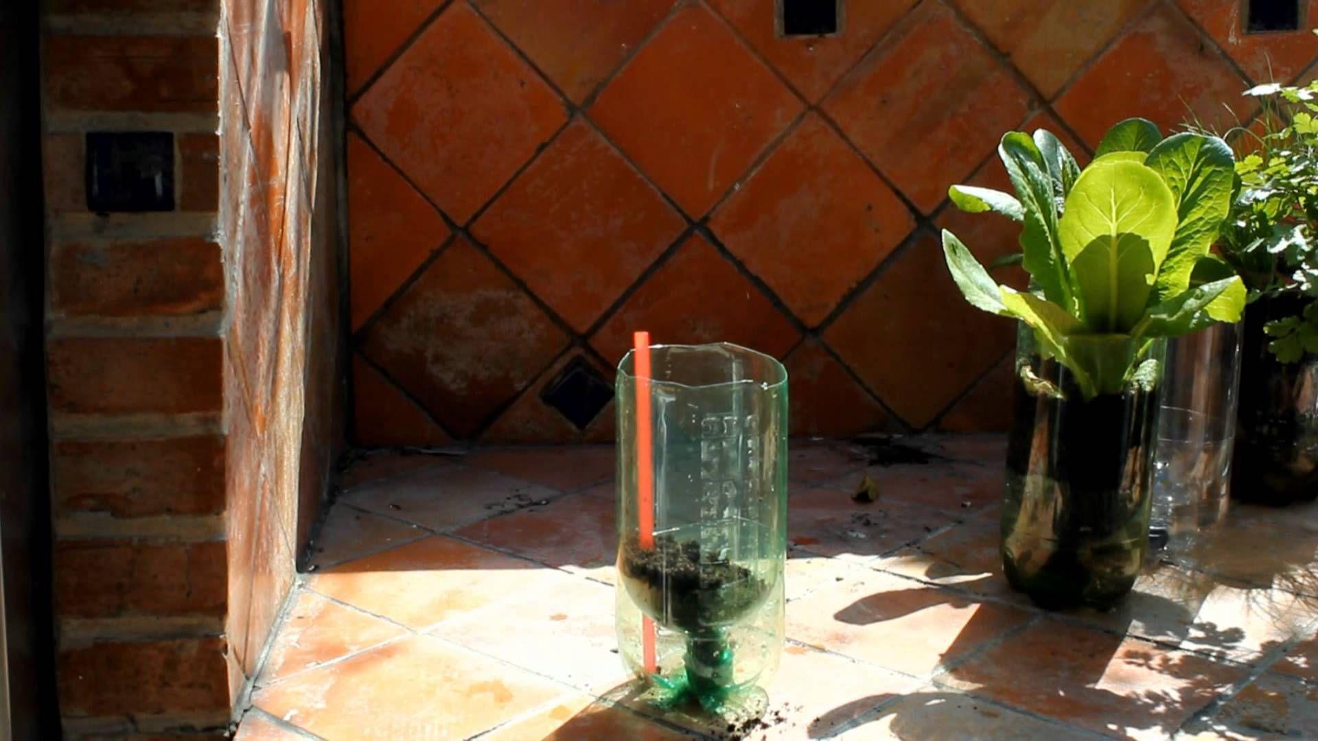 Building a soda bottle garden.wmv | Garden-Structures | Pinterest ...