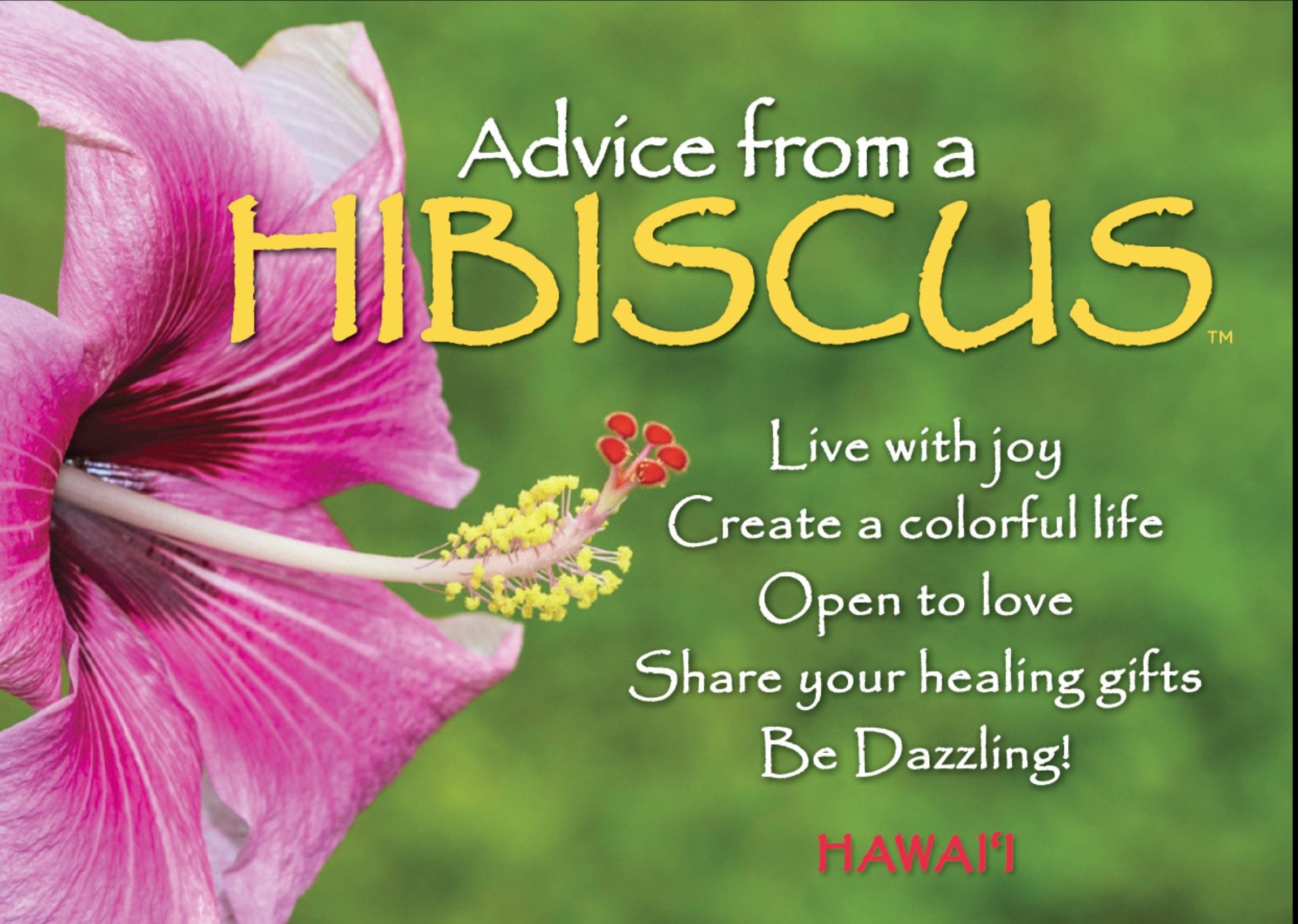 Open To Love Advice From A Hibiscus Your True Nature Advice True Nature Hibiscus