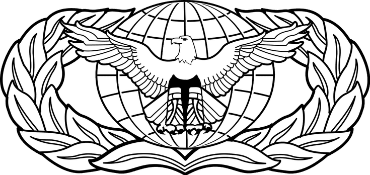 Air Force Occupational And Aeronautical Badges Force Protection - Air-force-occupational-badges