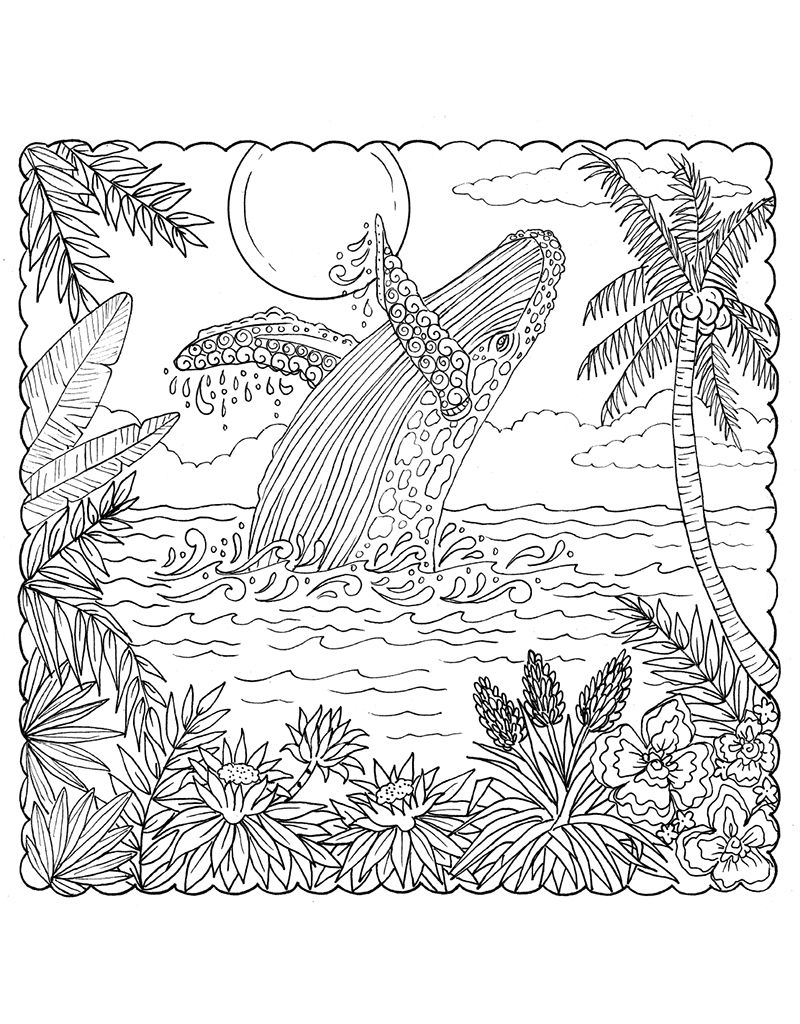 Zendoodle Coloring Tropical Paradise Dolphin Coloring Pages
