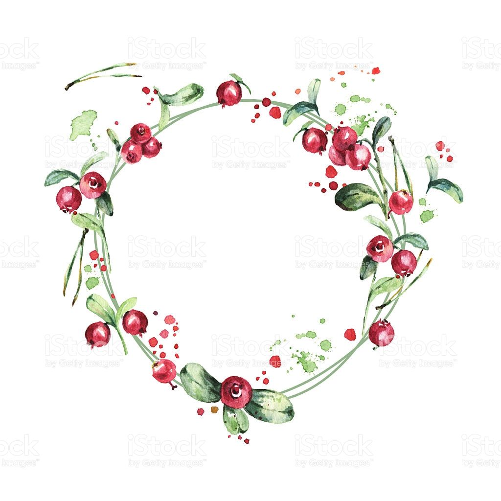 Photo of Watercolor wreath, red berries, green branches and leaves