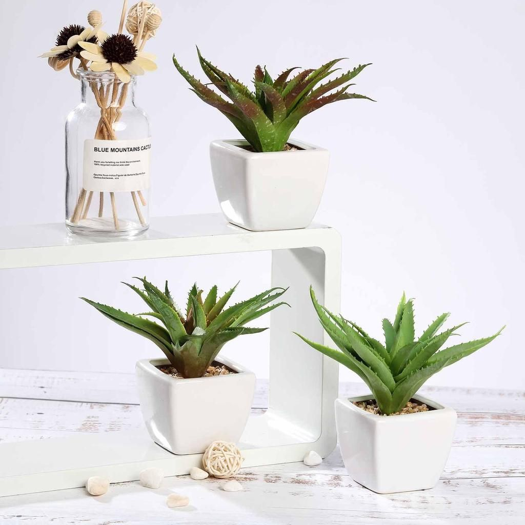 Set Of 3 Assorted Fake Succulents In Pot 5 Assorted Spotted Aloe Vera Artificial Plants With Pots Artificial Succulents Plants Fake Succulents