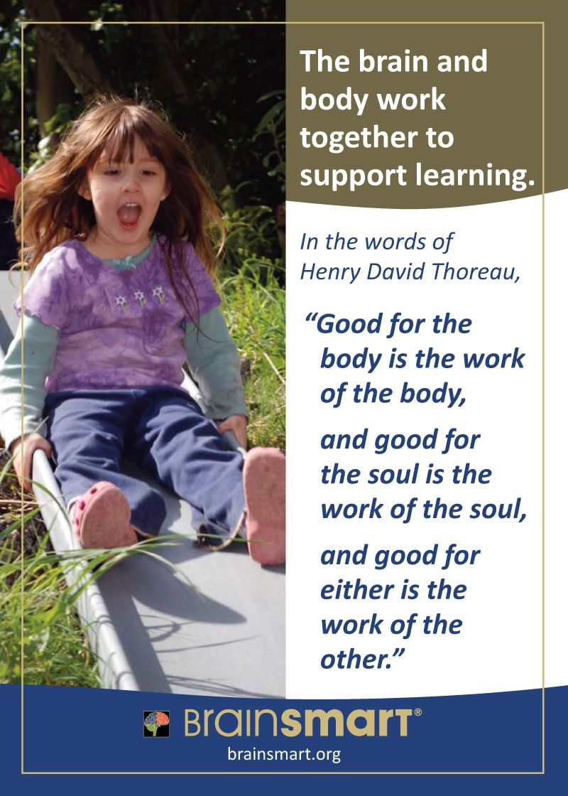Brain and body work together.   Body, Supportive, Working ...