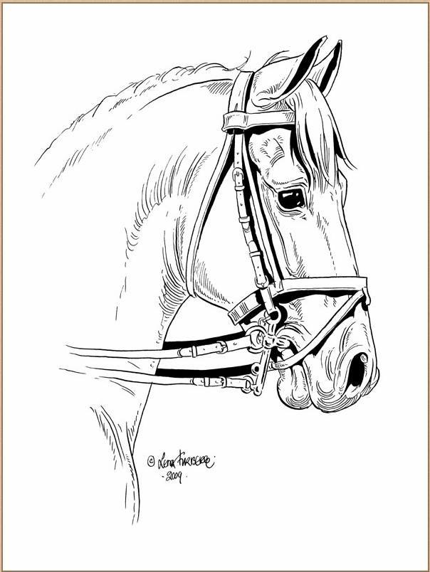 Lena Furberg horses dressage horse | Лошадь.Конь.Олень
