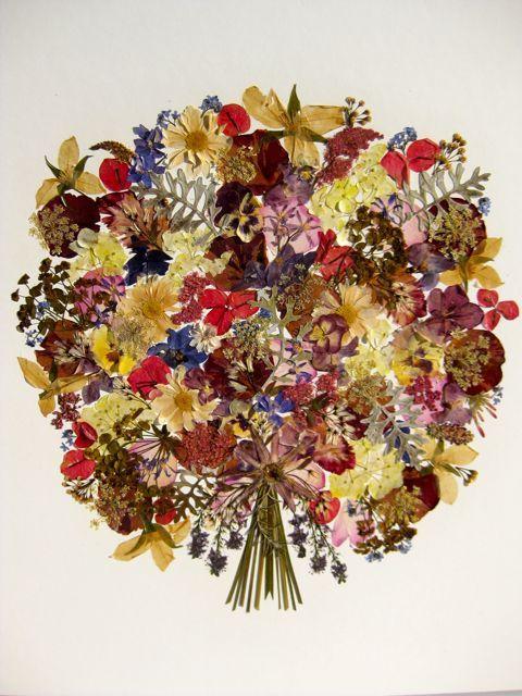 Pressed flowers 꽃 Pinterest Flores prensadas, Flores secas y Flor - flores secas