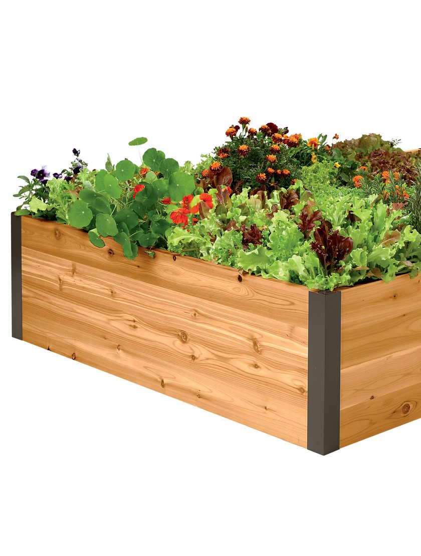 Use 4 Ft Deep Root Cedar Raised Beds To Grow Vegetables Or Along A Perimeter Create Stunning Border Gardens