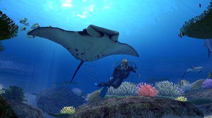 Underwater magic...