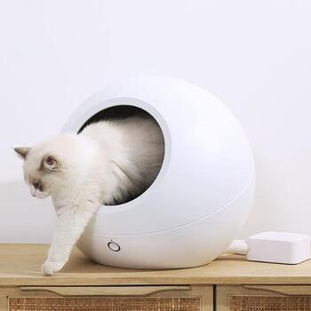 愛しいキミのために選びたい ペットライフが充実するおしゃれな 犬猫グッズ キナリノ ペット 猫 動物