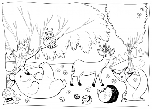 Detailed Coloring Page Forest Creatures Forest Camping