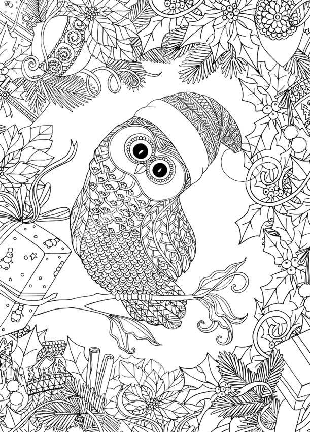 Raskraski-antistress-sovy-6.jpg (611×850)   Owls   Pinterest   Navidad