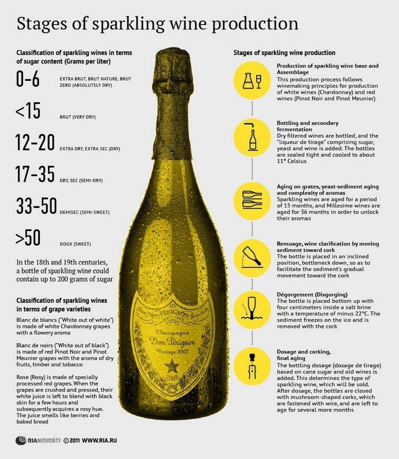 Weinkeller Len infografica interessante ma è corretta stages of sparkling wine
