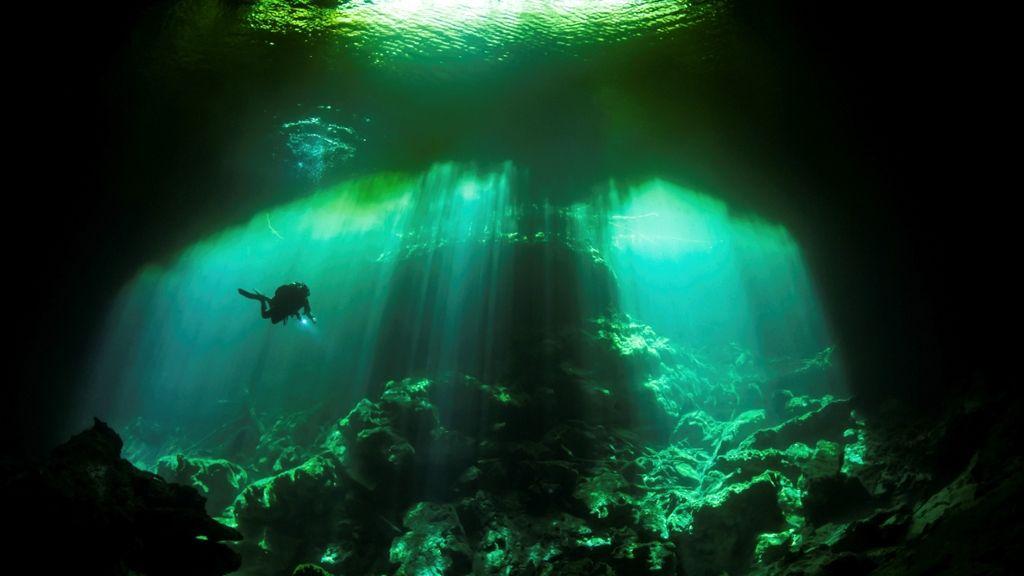 ❥ Diving in the Garden of Eden Cenote, Mexico