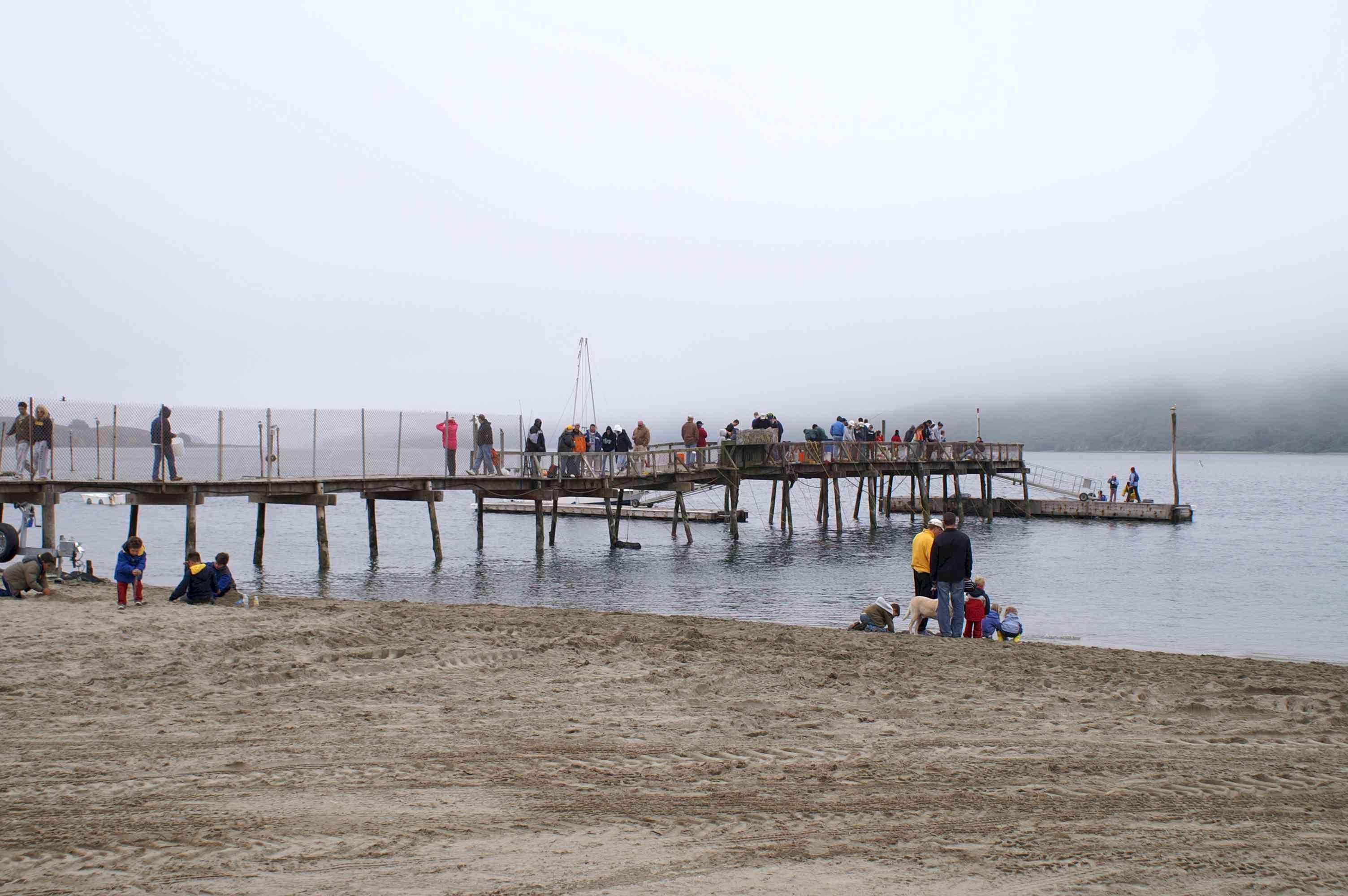 Dillion beach beach travel outdoor