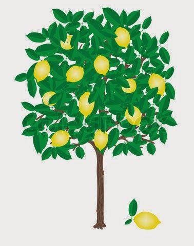 Gambar Pohon Mangga Kartun Lucu Mango Tree Cartoon Pictures Wallpaper Lemon Tree Tree Cartoon Cartoon Lemon