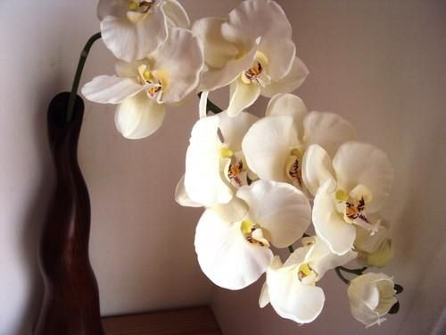 grand vase design orchidee g ant blanc luxe 80cm flowers pinterest. Black Bedroom Furniture Sets. Home Design Ideas