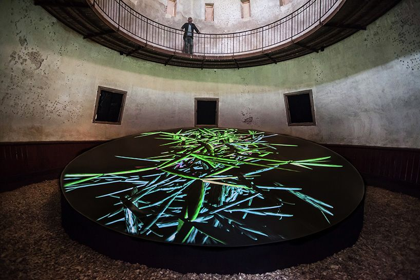 miguel chevalier generates a virtual forest for trans natures