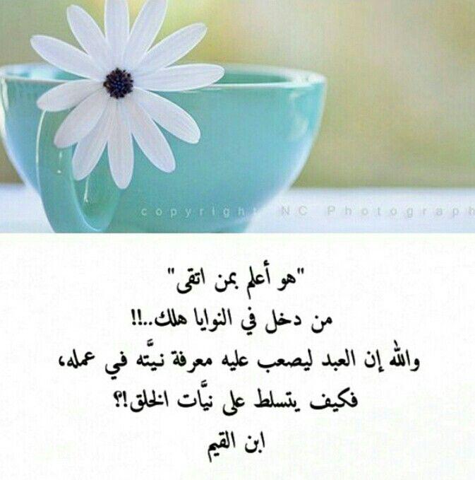 هو اعلم Words Allah Arabic Quotes