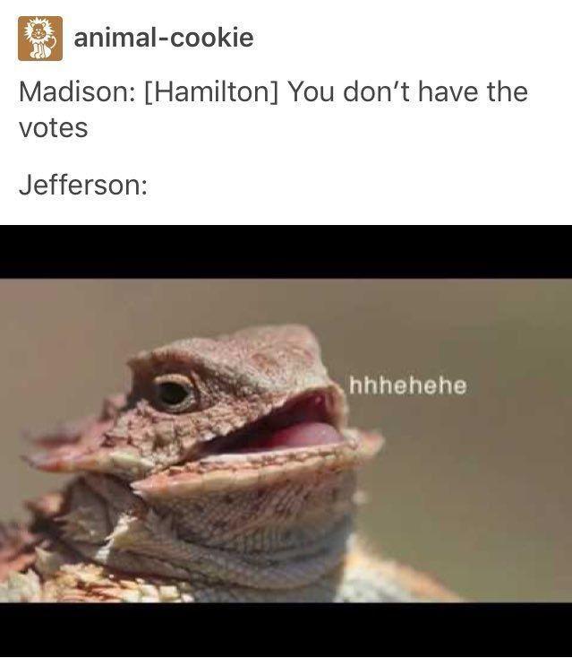 HAMILTON PICS AND MEMES - TOMMY JEFFERSON